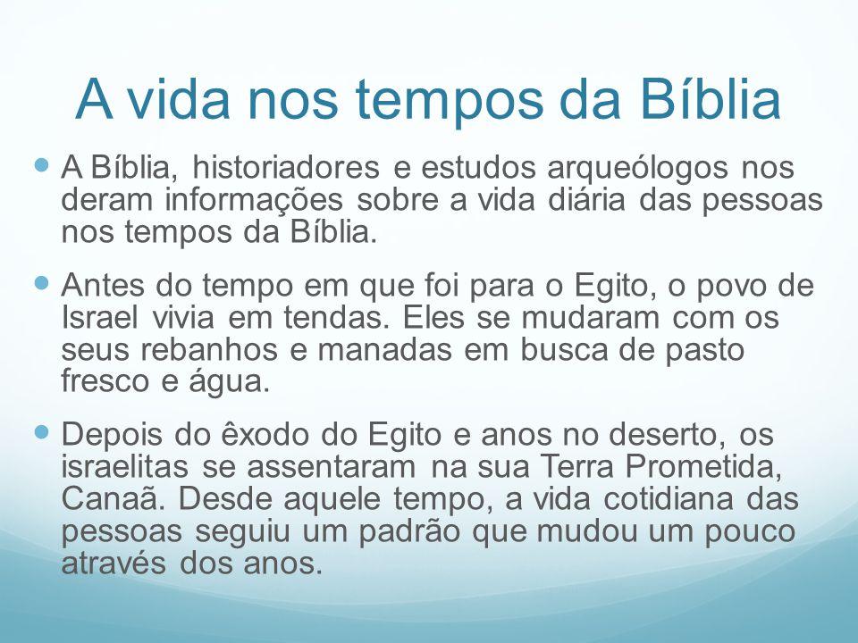 A vida nos tempos da Bíblia A Bíblia, historiadores e estudos arqueólogos nos deram informações sobre a vida diária das pessoas nos tempos da Bíblia.