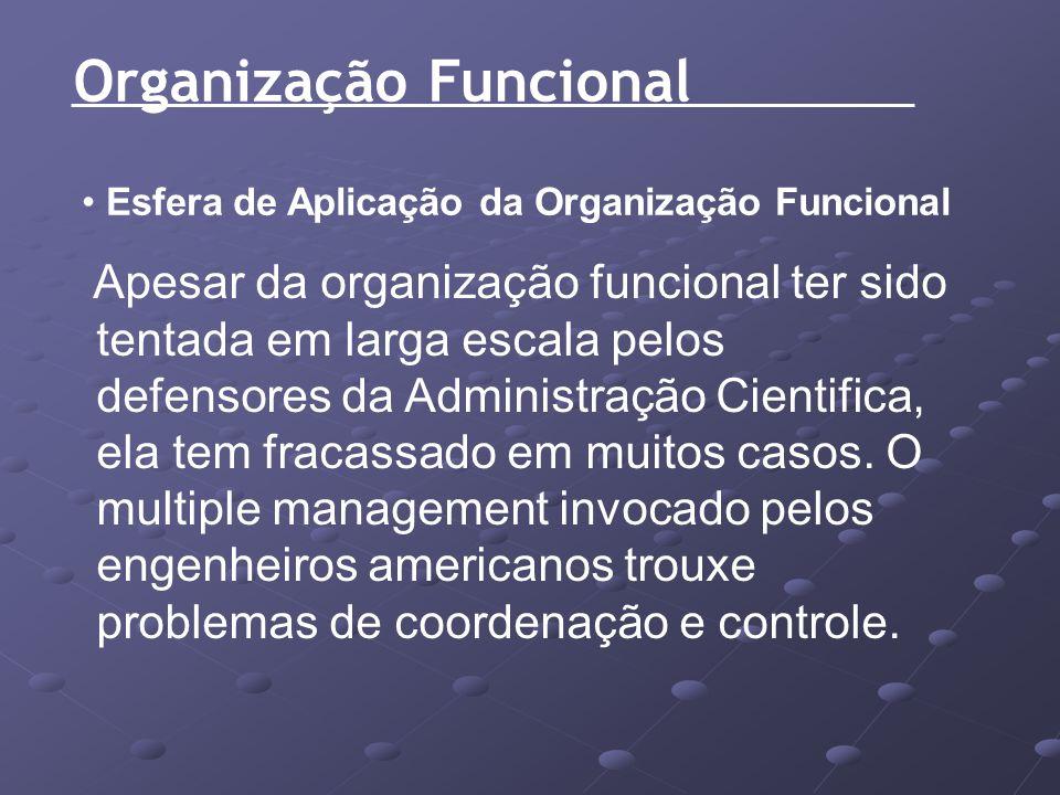 Organização Funcional Esfera de Aplicação da Organização Funcional Apesar da organização funcional ter sido tentada em larga escala pelos defensores d