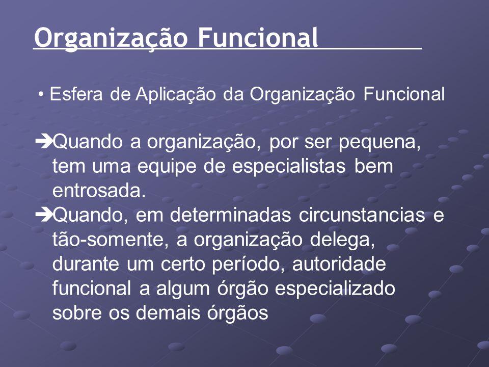 Organização Funcional Esfera de Aplicação da Organização Funcional Quando a organização, por ser pequena, tem uma equipe de especialistas bem entrosad