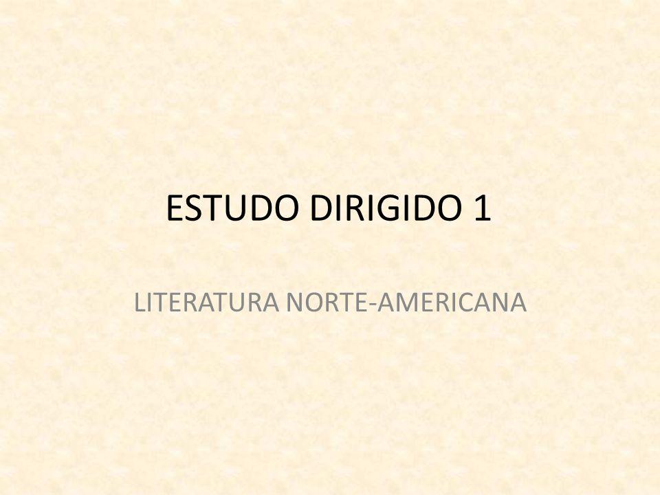 ESTUDO DIRIGIDO 1 LITERATURA NORTE-AMERICANA