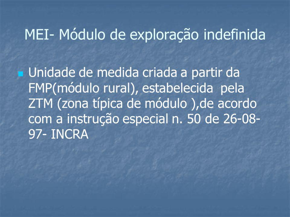 MEI- Módulo de exploração indefinida Unidade de medida criada a partir da FMP(módulo rural), estabelecida pela ZTM (zona típica de módulo ),de acordo