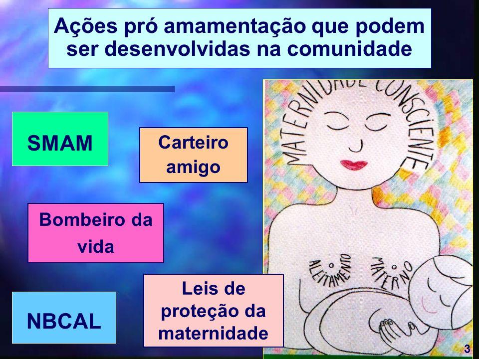 3 Ações pró amamentação que podem ser desenvolvidas na comunidade Bombeiro da vida Leis de proteção da maternidade Carteiro amigo SMAM NBCAL 3