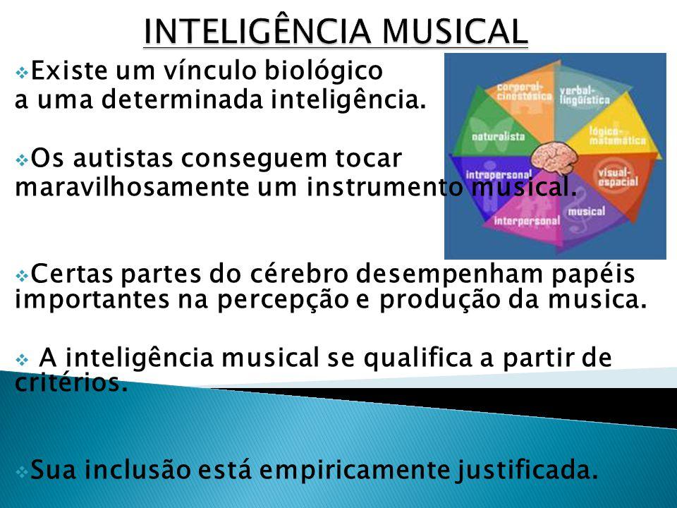 Existe um vínculo biológico a uma determinada inteligência. Os autistas conseguem tocar maravilhosamente um instrumento musical. Certas partes do cére
