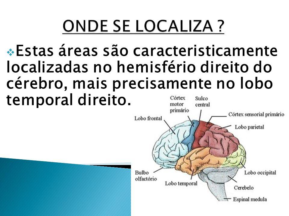 Estas áreas são caracteristicamente localizadas no hemisfério direito do cérebro, mais precisamente no lobo temporal direito.