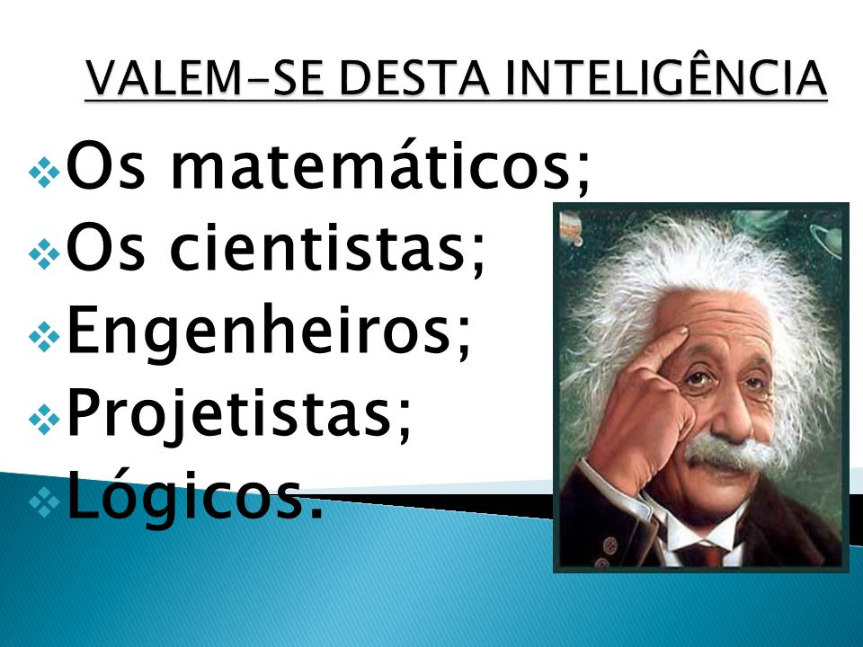 Os matemáticos; Os cientistas; Engenheiros; Projetistas; Lógicos.