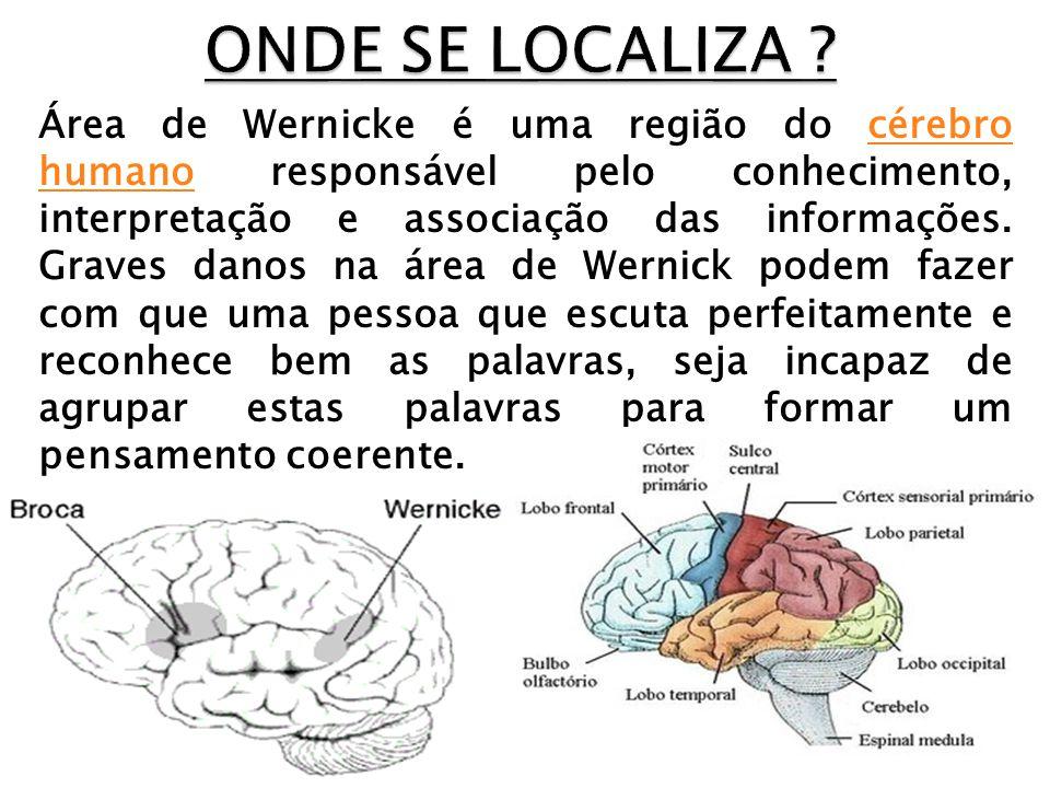 Área de Wernicke é uma região do cérebro humano responsável pelo conhecimento, interpretação e associação das informações. Graves danos na área de Wer