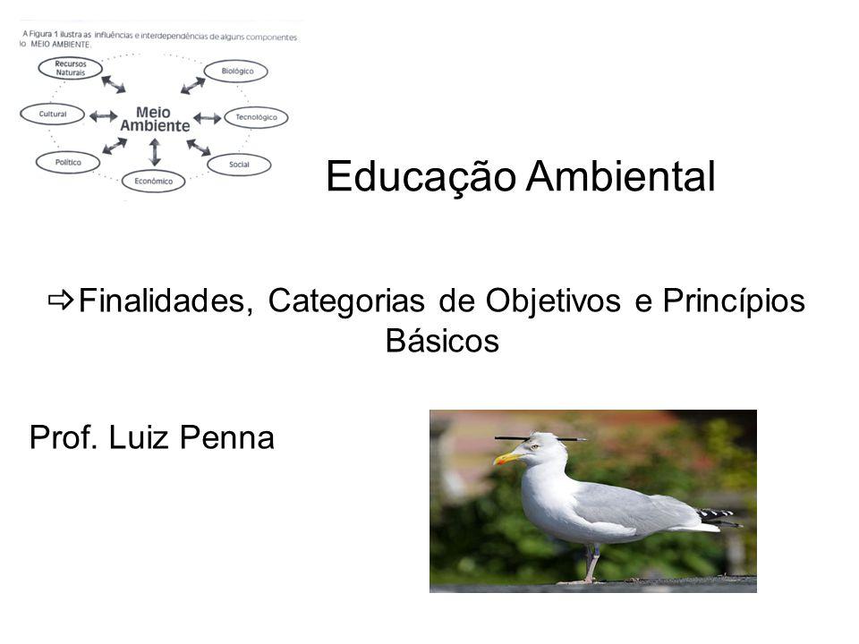 Educação Ambiental Finalidades, Categorias de Objetivos e Princípios Básicos Prof. Luiz Penna