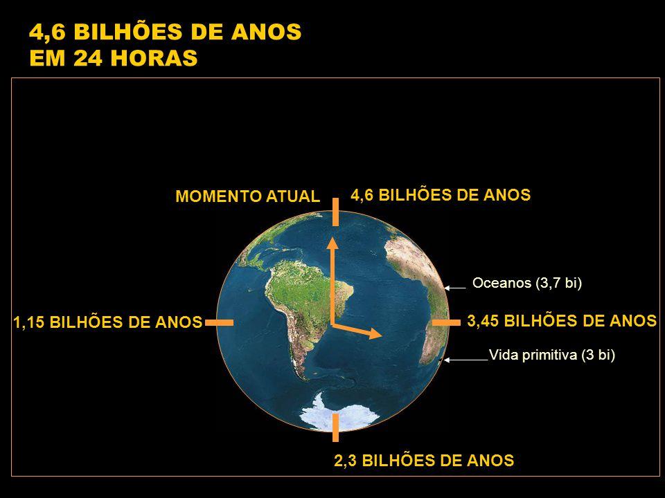 4,6 BILHÕES DE ANOS 1,15 BILHÕES DE ANOS 2,3 BILHÕES DE ANOS 3,45 BILHÕES DE ANOS Vida primitiva (3 bi) Oceanos (3,7 bi) 4,6 BILHÕES DE ANOS EM 24 HORAS MOMENTO ATUAL