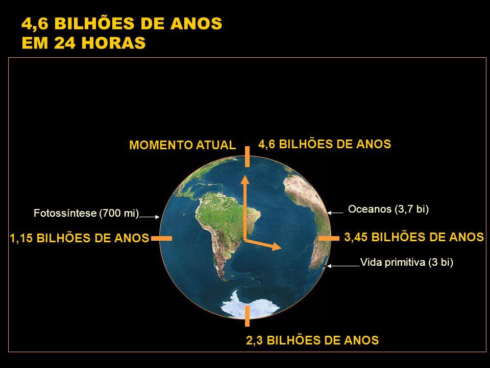 4,6 BILHÕES DE ANOS 1,15 BILHÕES DE ANOS 2,3 BILHÕES DE ANOS 3,45 BILHÕES DE ANOS Vida primitiva (3 bi) Oceanos (3,7 bi) 4,6 BILHÕES DE ANOS EM 24 HORAS MOMENTO ATUAL Fotossíntese (700 mi)