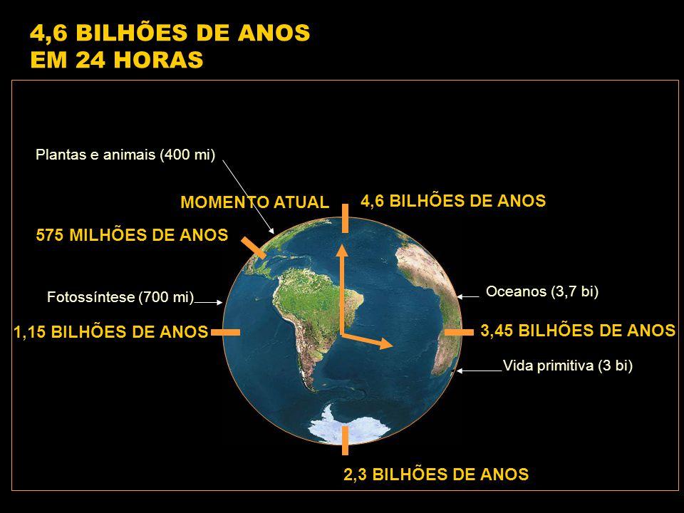 4,6 BILHÕES DE ANOS 1,15 BILHÕES DE ANOS 2,3 BILHÕES DE ANOS 3,45 BILHÕES DE ANOS 575 MILHÕES DE ANOS Vida primitiva (3 bi) Fotossíntese (700 mi) Oceanos (3,7 bi) Plantas e animais (400 mi) 4,6 BILHÕES DE ANOS EM 24 HORAS MOMENTO ATUAL