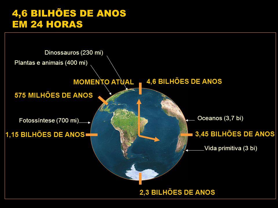 4,6 BILHÕES DE ANOS 1,15 BILHÕES DE ANOS 2,3 BILHÕES DE ANOS 3,45 BILHÕES DE ANOS 575 MILHÕES DE ANOS Vida primitiva (3 bi) Fotossíntese (700 mi) Oceanos (3,7 bi) Plantas e animais (400 mi) Dinossauros (230 mi) 4,6 BILHÕES DE ANOS EM 24 HORAS MOMENTO ATUAL