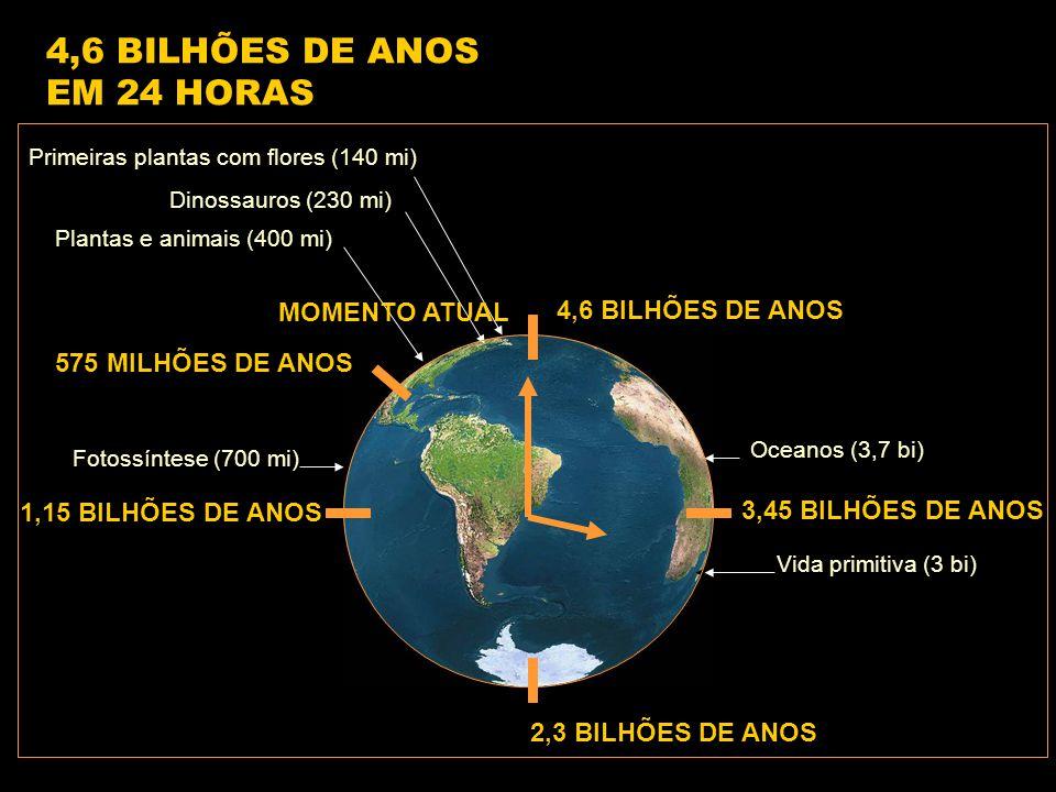 4,6 BILHÕES DE ANOS 1,15 BILHÕES DE ANOS 2,3 BILHÕES DE ANOS 3,45 BILHÕES DE ANOS 575 MILHÕES DE ANOS Vida primitiva (3 bi) Fotossíntese (700 mi) Oceanos (3,7 bi) Plantas e animais (400 mi) Dinossauros (230 mi) Primeiras plantas com flores (140 mi) 4,6 BILHÕES DE ANOS EM 24 HORAS MOMENTO ATUAL