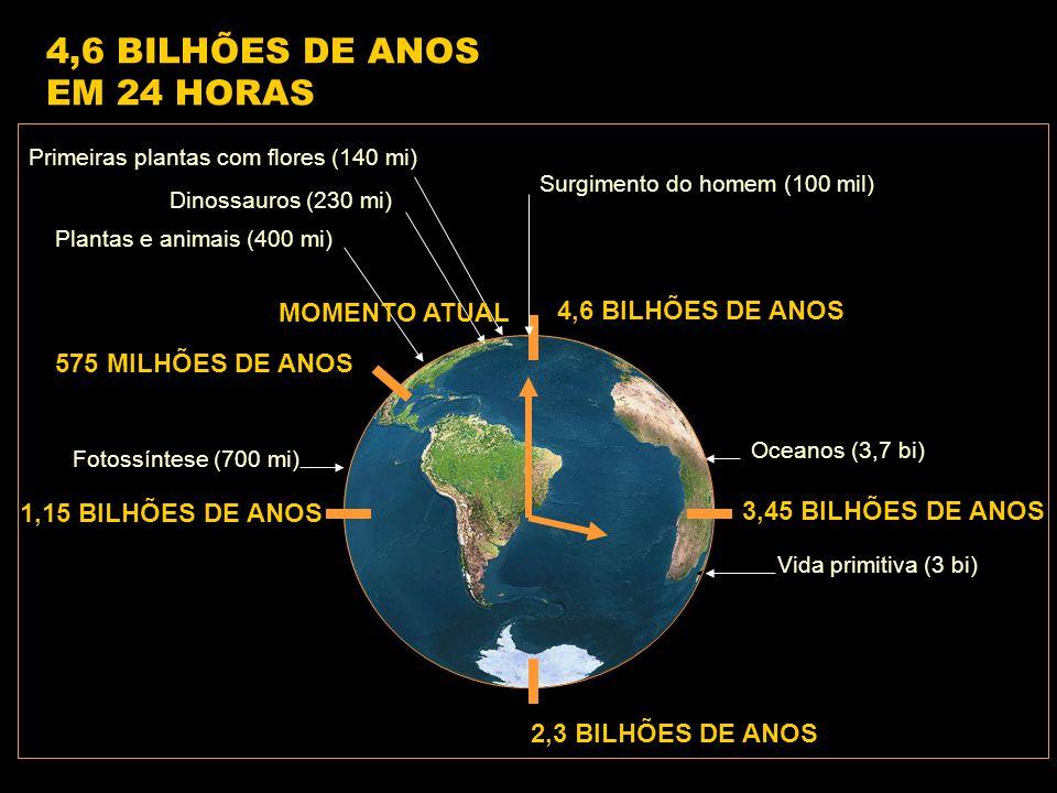 4,6 BILHÕES DE ANOS 1,15 BILHÕES DE ANOS 2,3 BILHÕES DE ANOS 3,45 BILHÕES DE ANOS 575 MILHÕES DE ANOS Vida primitiva (3 bi) Fotossíntese (700 mi) Oceanos (3,7 bi) Plantas e animais (400 mi) Dinossauros (230 mi) Primeiras plantas com flores (140 mi) Surgimento do homem (100 mil) 4,6 BILHÕES DE ANOS EM 24 HORAS MOMENTO ATUAL