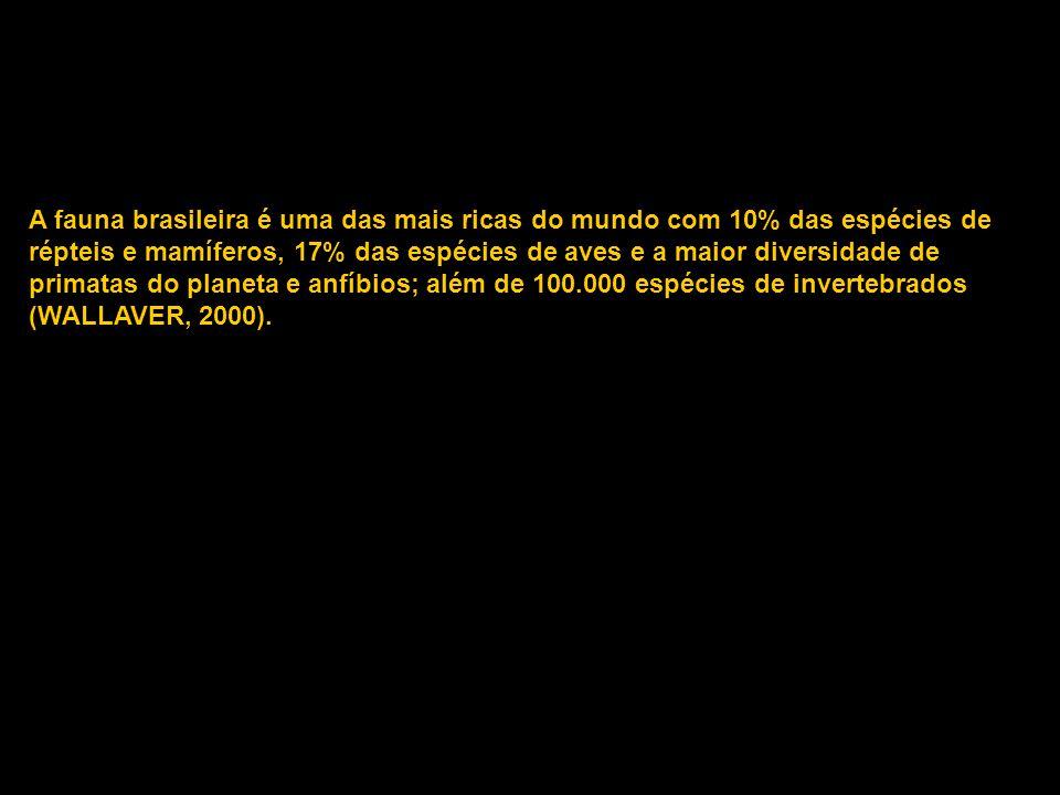 Qual o número de espécies de mamíferos, répteis, aves, anfíbios e peixes que ocorrem no Brasil .