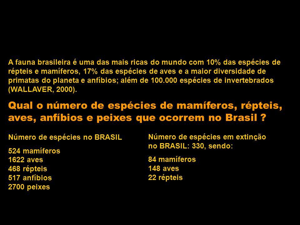Qual o número de espécies de mamíferos, répteis, aves, anfíbios e peixes que ocorrem no Brasil ? Número de espécies no BRASIL 524 mamíferos 1622 aves