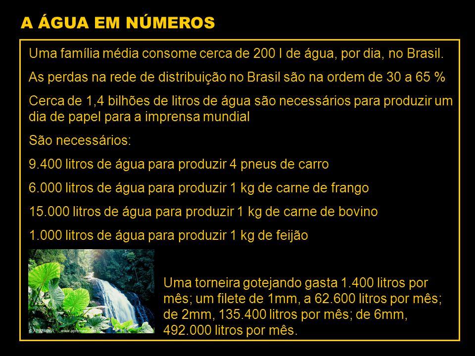 A ÁGUA EM NÚMEROS Uma família média consome cerca de 200 l de água, por dia, no Brasil. As perdas na rede de distribuição no Brasil são na ordem de 30