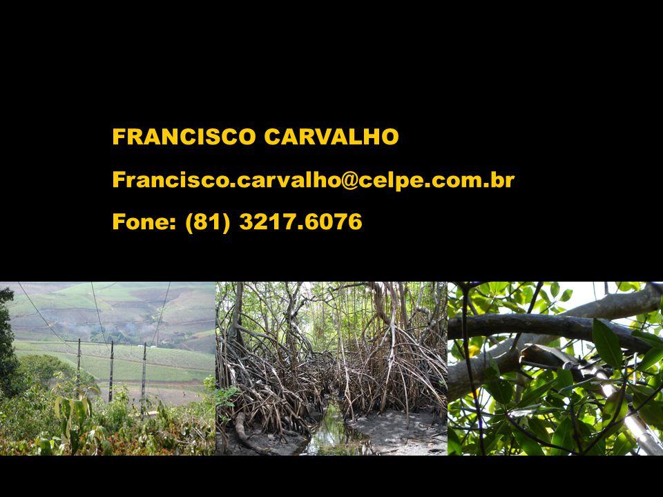 FRANCISCO CARVALHO Francisco.carvalho@celpe.com.br Fone: (81) 3217.6076