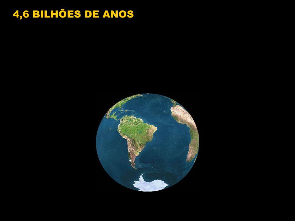 4,6 BILHÕES DE ANOS