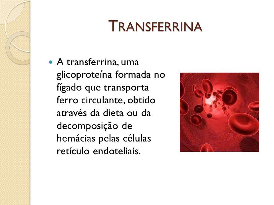 T RANSFERRINA A transferrina, uma glicoproteína formada no fígado que transporta ferro circulante, obtido através da dieta ou da decomposição de hemác