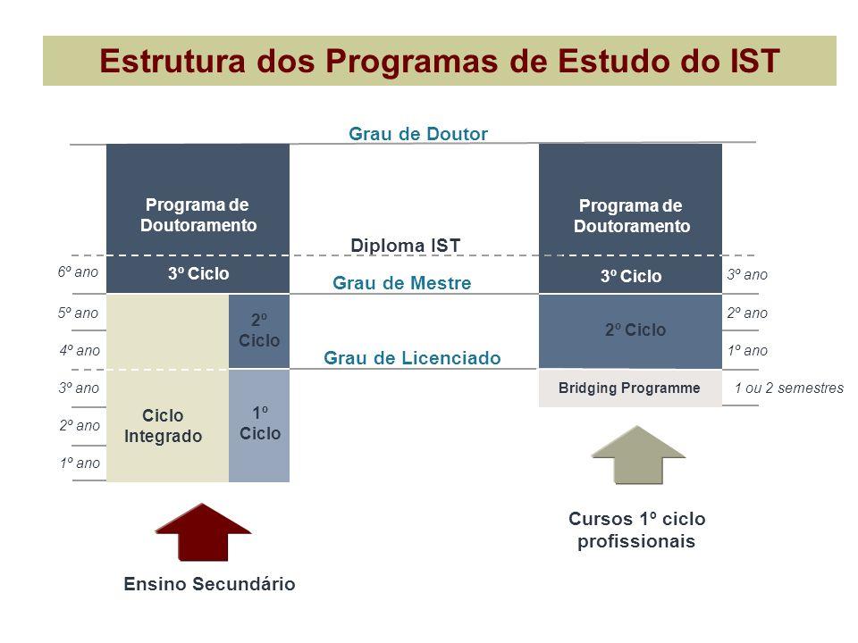 Estrutura dos Programas de Estudo do IST Cursos 1º ciclo profissionais Grau de Doutor Diploma IST Programa de Doutoramento Grau de Mestre 6º ano 3º an