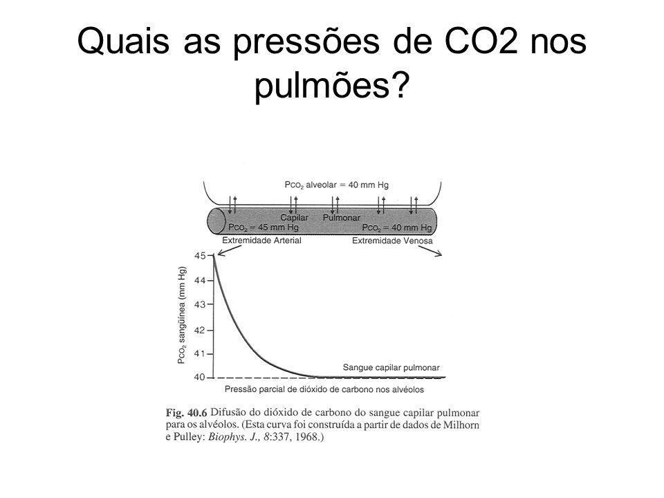 Quais as pressões de CO2 nos pulmões?