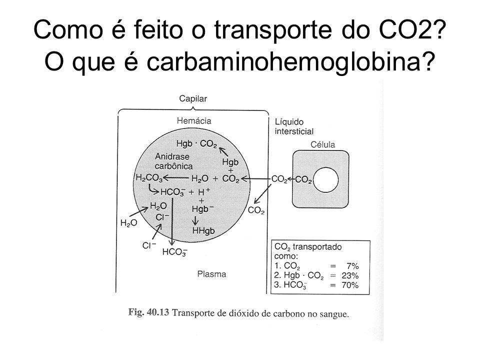 Como é feito o transporte do CO2? O que é carbaminohemoglobina?