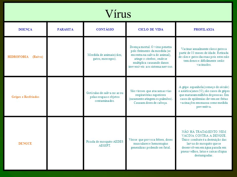 DOENÇAS E AGENTES CAUSADORES Vírus DOENÇAPARASITA CONTÁGIOCICLO DE VIDAPROFILAXIA HIDROFOBIA (Raiva) Mordida de animais(cães, gatos, morcegos). Doença