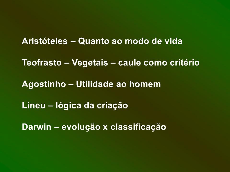 Aristóteles – Quanto ao modo de vida Teofrasto – Vegetais – caule como critério Agostinho – Utilidade ao homem Lineu – lógica da criação Darwin – evol
