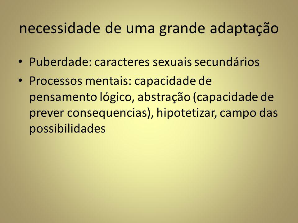 necessidade de uma grande adaptação Puberdade: caracteres sexuais secundários Processos mentais: capacidade de pensamento lógico, abstração (capacidad