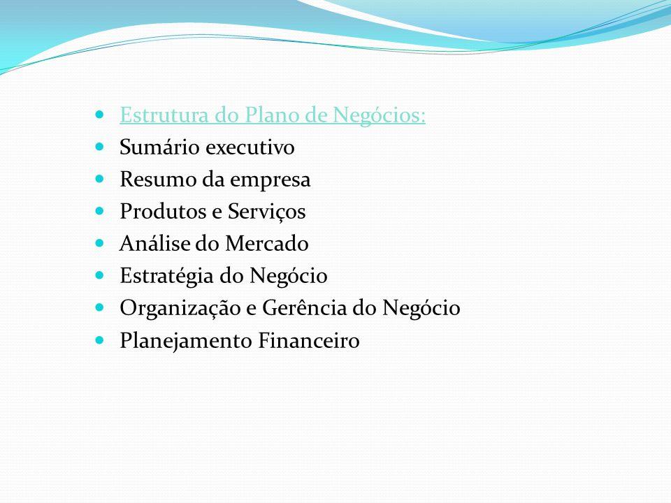 Estrutura do Plano de Negócios: Sumário executivo Resumo da empresa Produtos e Serviços Análise do Mercado Estratégia do Negócio Organização e Gerênci
