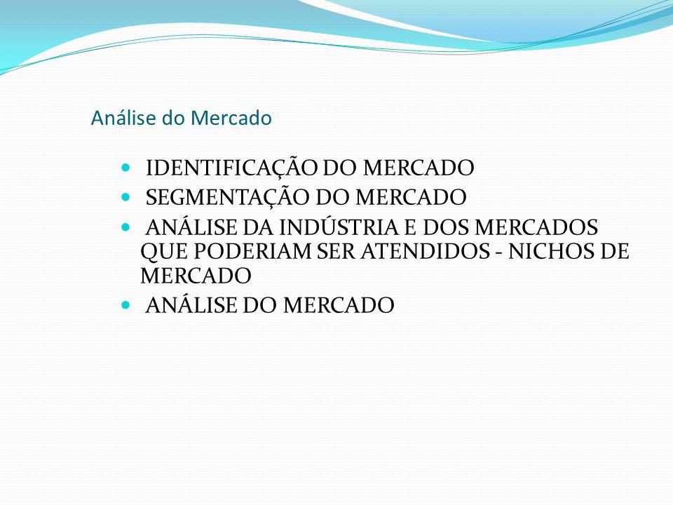 Análise do Mercado IDENTIFICAÇÃO DO MERCADO SEGMENTAÇÃO DO MERCADO ANÁLISE DA INDÚSTRIA E DOS MERCADOS QUE PODERIAM SER ATENDIDOS - NICHOS DE MERCADO