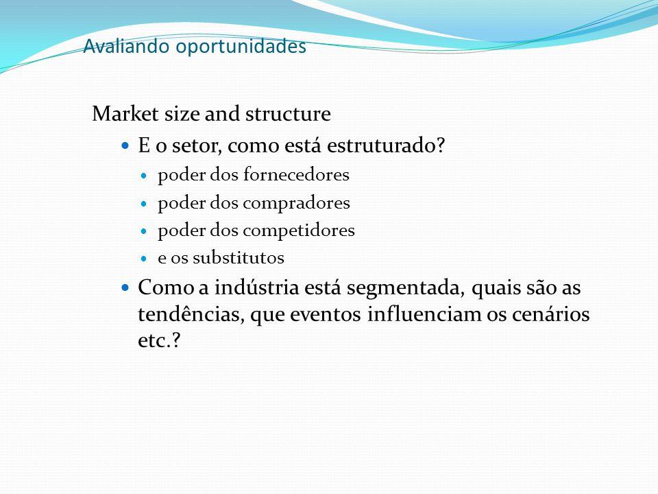 Avaliando oportunidades Margin Analysis Determine as forças do negócio Identifique as possibilidades de lucros (margem bruta > 20, 30, 40%?!) Analise os custos (necessidades de capital), break even, retornos...