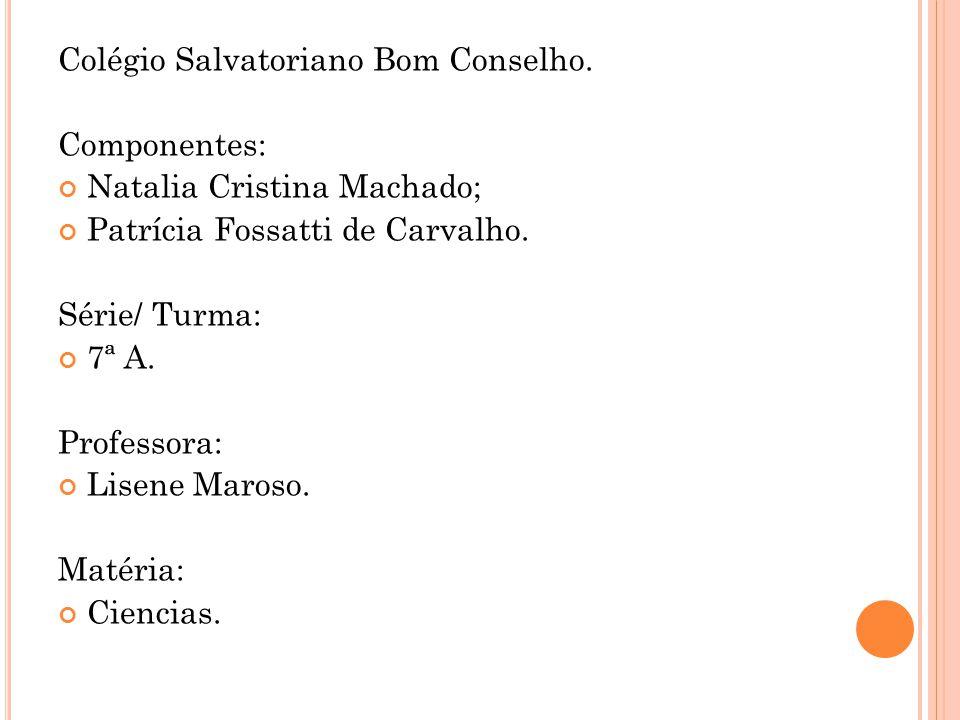 Colégio Salvatoriano Bom Conselho. Componentes: Natalia Cristina Machado; Patrícia Fossatti de Carvalho. Série/ Turma: 7ª A. Professora: Lisene Maroso