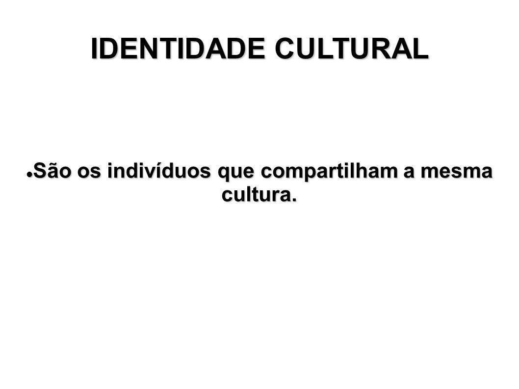 IDENTIDADE CULTURAL São os indivíduos que compartilham a mesma cultura. São os indivíduos que compartilham a mesma cultura.