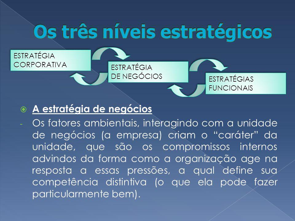A estratégia de negócios - Os fatores ambientais, interagindo com a unidade de negócios (a empresa) criam o caráter da unidade, que são os compromisso
