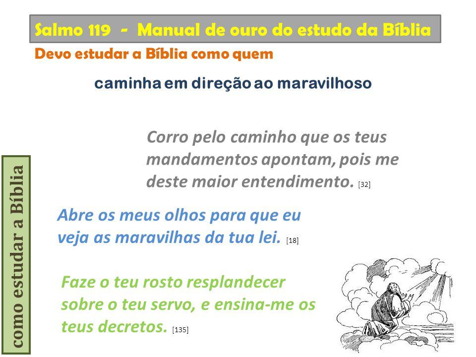como estudar a Bíblia Corro pelo caminho que os teus mandamentos apontam, pois me deste maior entendimento. [32] Salmo 119 - Manual de ouro do estudo