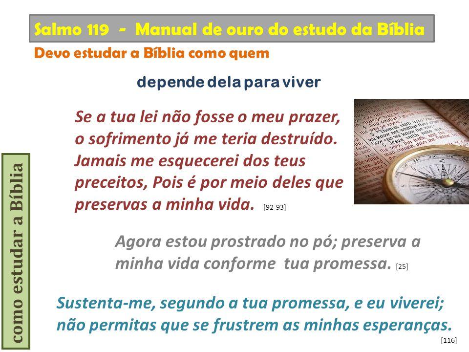 como estudar a Bíblia Se a tua lei não fosse o meu prazer, o sofrimento já me teria destruído. Jamais me esquecerei dos teus preceitos, Pois é por mei