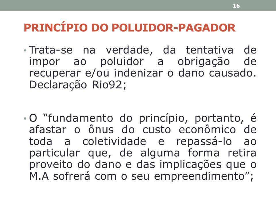 PRINCÍPIO DO POLUIDOR-PAGADOR Trata-se na verdade, da tentativa de impor ao poluidor a obrigação de recuperar e/ou indenizar o dano causado. Declaraçã