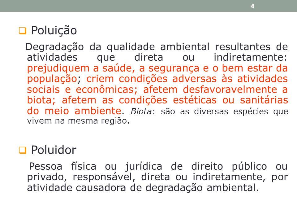 PRINCÍPIO DEMOCRÁTICO assegura a participação do cidadão na proteção do MA.