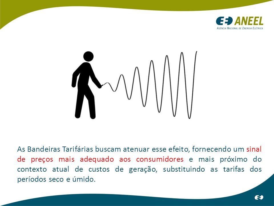 No parque gerador de energia elétrica brasileiro predominam as usinas hidrelétricas (65% da Potência Instalada e 80% da Energia Gerada), que dependem