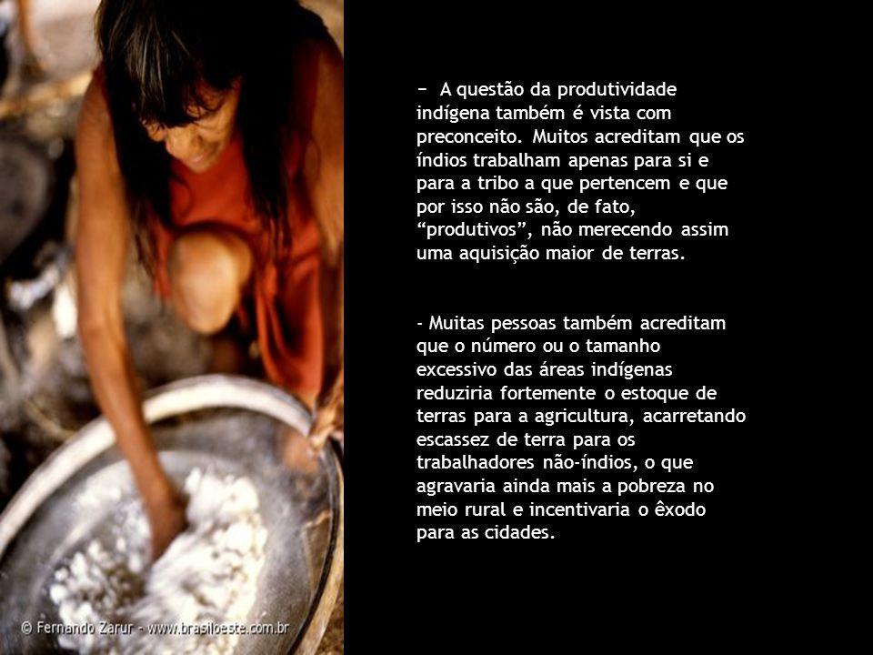 - A questão da produtividade indígena também é vista com preconceito. Muitos acreditam que os índios trabalham apenas para si e para a tribo a que per