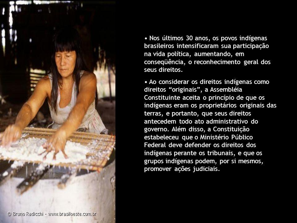 Nos últimos 30 anos, os povos indígenas brasileiros intensificaram sua participação na vida política, aumentando, em conseqüência, o reconhecimento ge