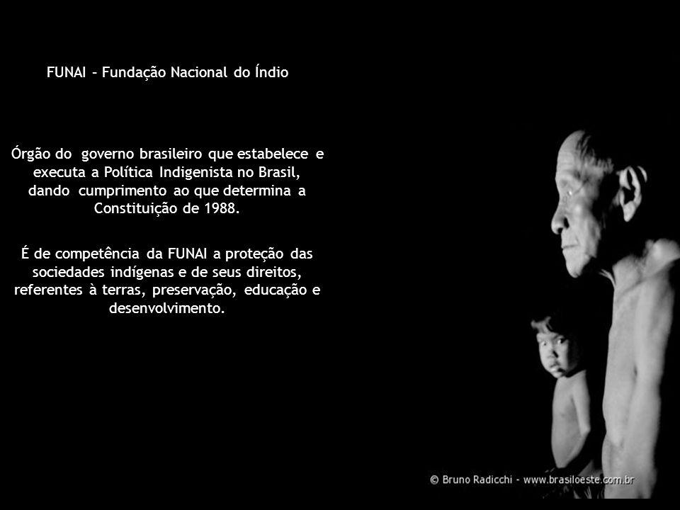 FUNAI – Fundação Nacional do Índio Órgão do governo brasileiro que estabelece e executa a Política Indigenista no Brasil, dando cumprimento ao que det