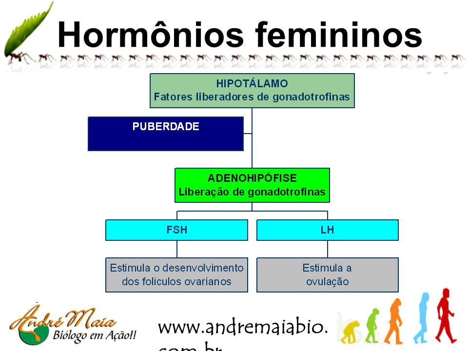 www.andremaiabio. com.br Métodos contraceptivos Muco ou Billings