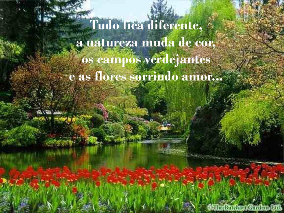 Tudo fica diferente, a natureza muda de cor, os campos verdejantes e as flores sorrindo amor...