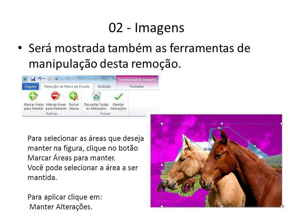 02 - Imagens Será mostrada também as ferramentas de manipulação desta remoção. Para selecionar as áreas que deseja manter na figura, clique no botão M