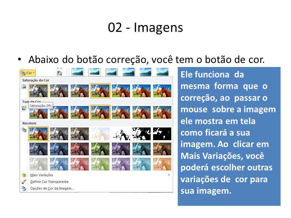 02 - Imagens Abaixo do botão correção, você tem o botão de cor. Ele funciona da mesma forma que o correção, ao passar o mouse sobre a imagem ele mostr