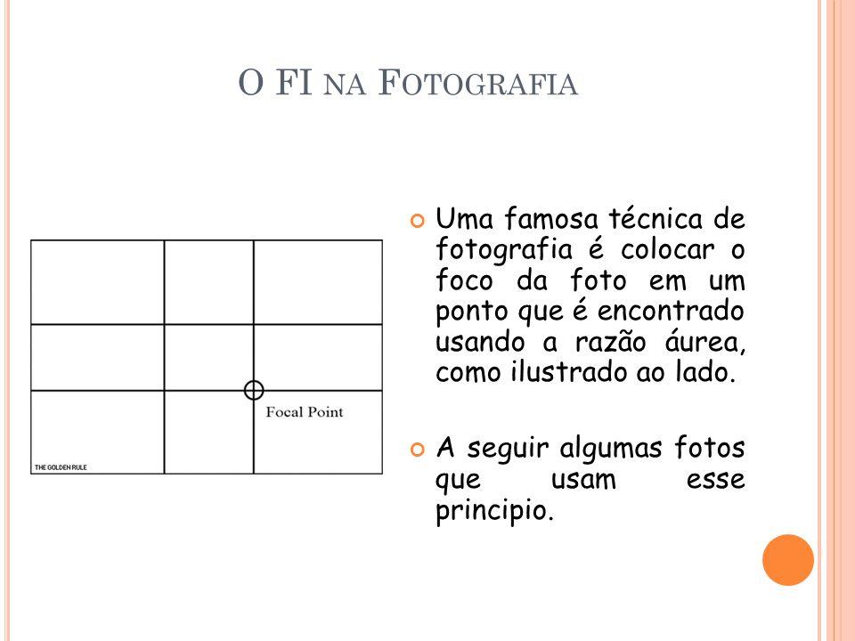 O FI NA F OTOGRAFIA Uma famosa técnica de fotografia é colocar o foco da foto em um ponto que é encontrado usando a razão áurea, como ilustrado ao lado.