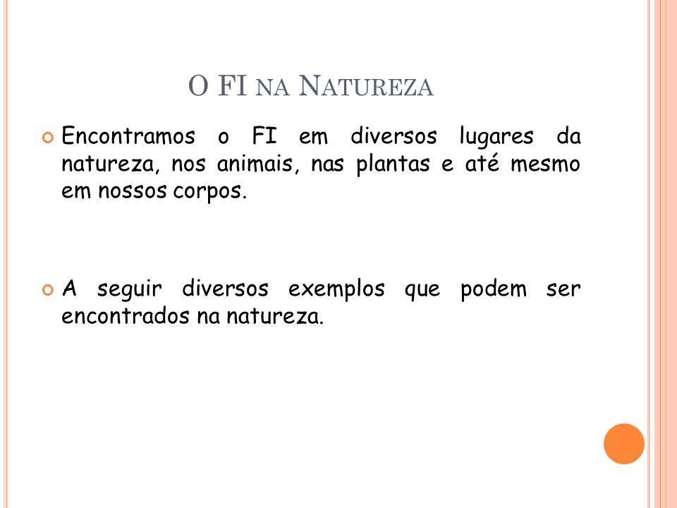 O FI NA N ATUREZA Encontramos o FI em diversos lugares da natureza, nos animais, nas plantas e até mesmo em nossos corpos. A seguir diversos exemplos