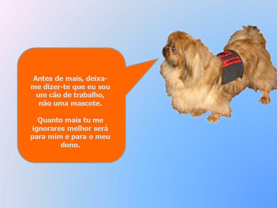 Antes de mais, deixa- me dizer-te que eu sou um cão de trabalho, não uma mascote.